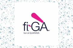 figa-Logo