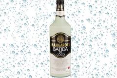 Batida-De-Coco