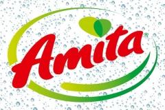 Amita_new-logo