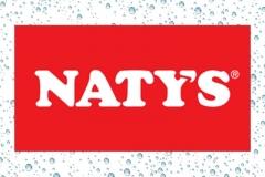 natis-logo