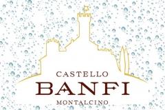 banfi-logo